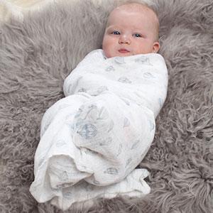 aden + anais Lot de 4 maxi-langes bébé hibou bleu
