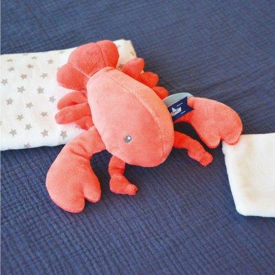 Peluche bébé pantin homard avec doudou corail Doudou et compagnie