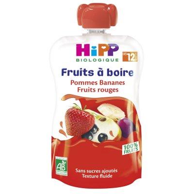 Gourde pommes bananes fruits rouges 120ml dès 12 mois Hipp