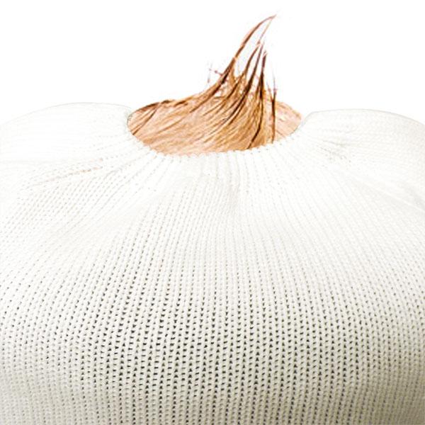 Pull sans couture blanc 100%coton bio Mlt