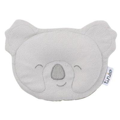Cale tête koala Tineo