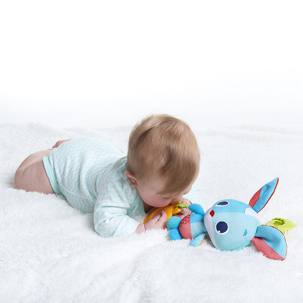 jouet d 39 veil b b thomas le lapin de tiny love sur allob b. Black Bedroom Furniture Sets. Home Design Ideas