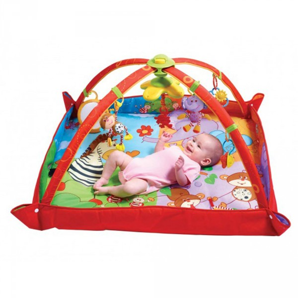 Tapis D 39 Veil Gymini Move And Play De Tiny Love Chez Naturab B