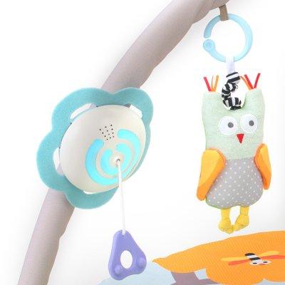 Tapis d'éveil musical nature Taf toys
